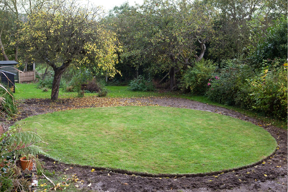 Lawns in small gardens for A b lawn and garden