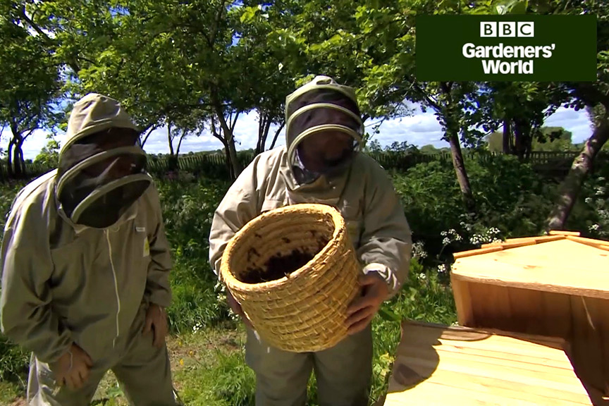 How to keep a top bar beehive (part two) video