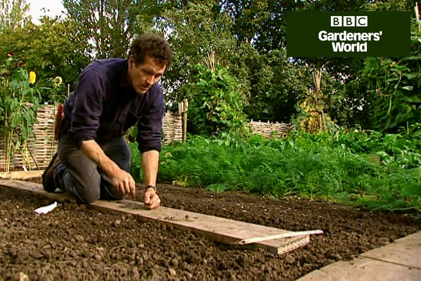 How to plant early broad beans video