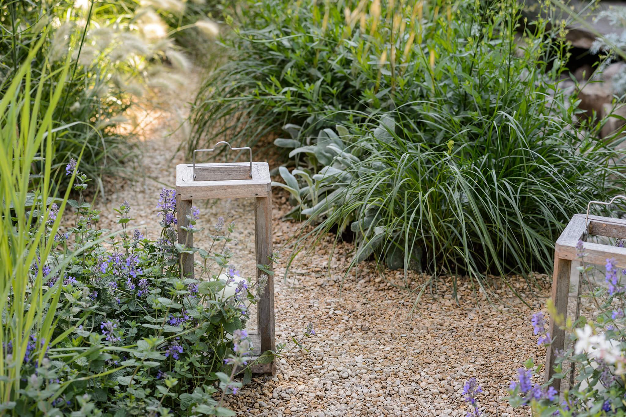 Best Plants for a Gravel Garden
