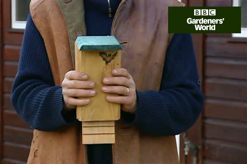 How to make a bat box video