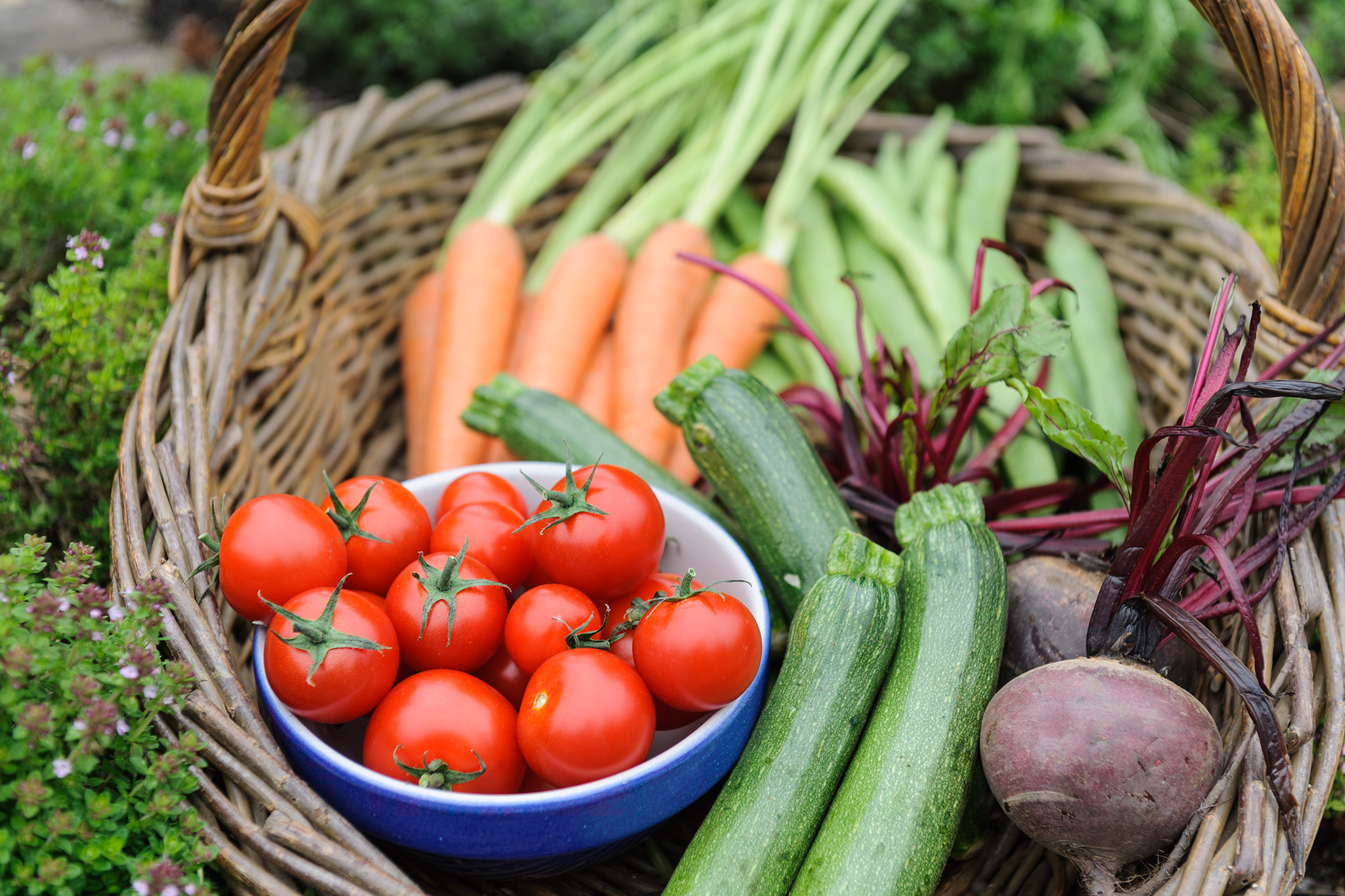 Basket of homegrown veg