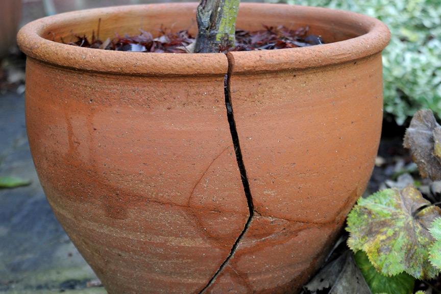 Stop Terracotta Pots Cracking Gardenersworld Com