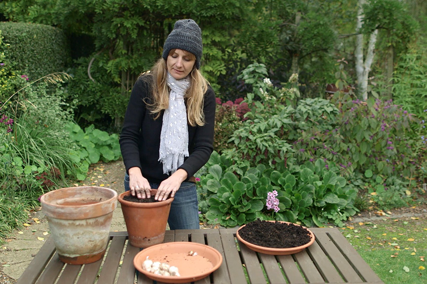Spring bulb pot for bees NFG video