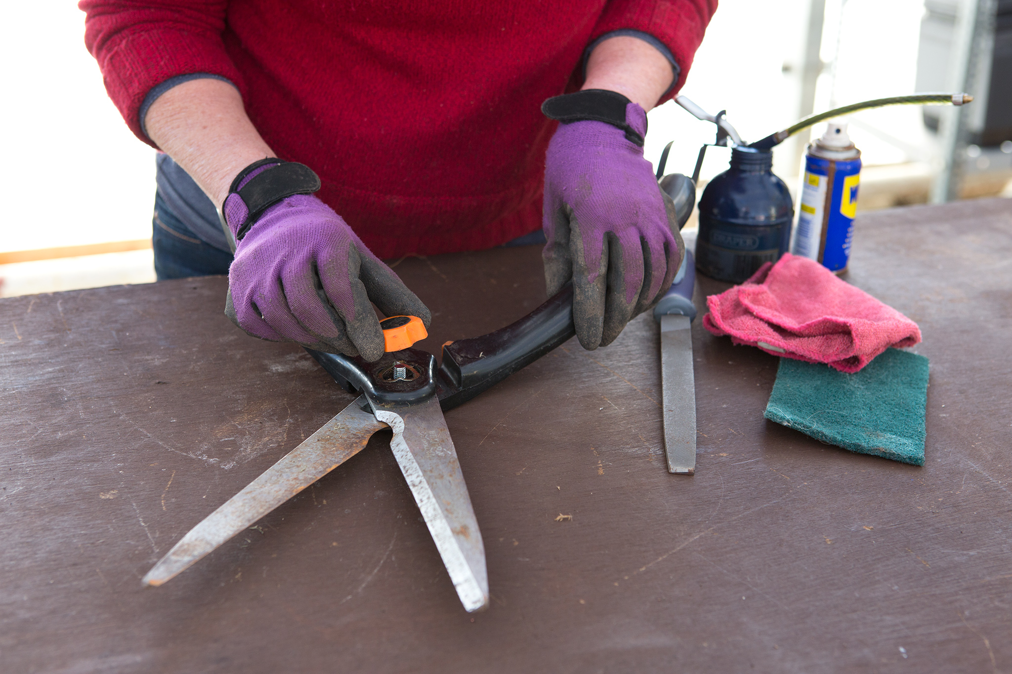 Maintaining shears