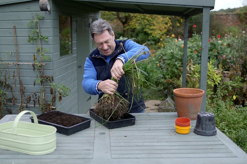 Lifting herbs for winter NFG video