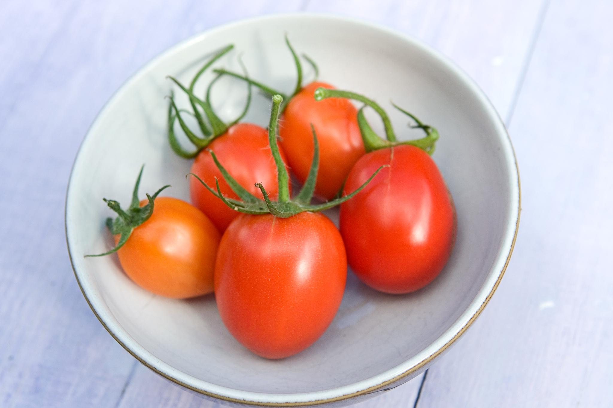 tomato-rio-grande-2