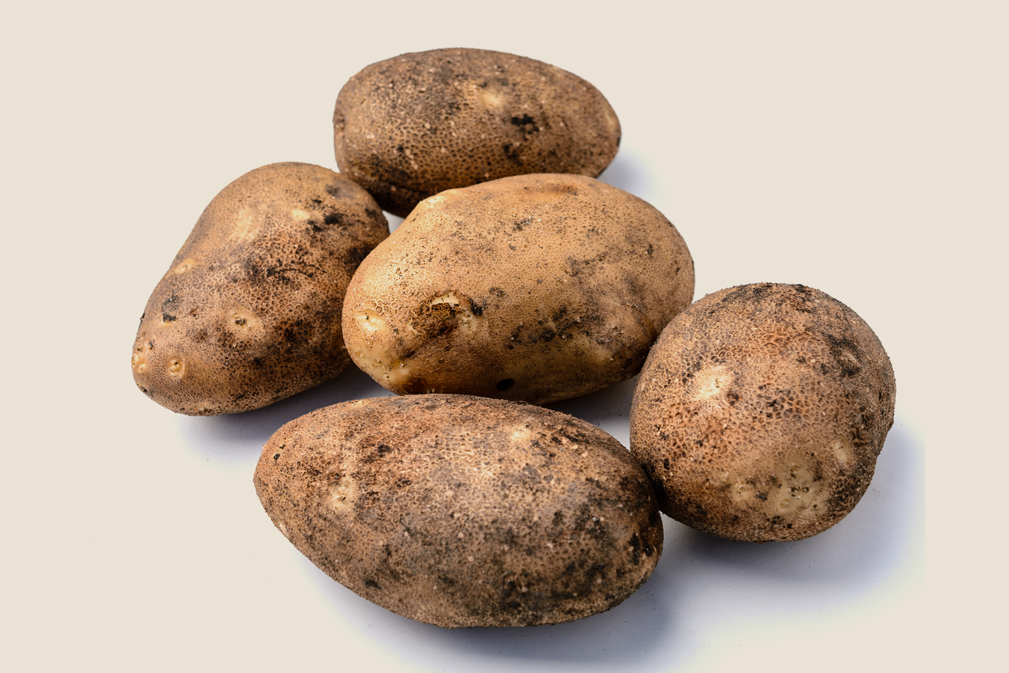 potato-innovator-2