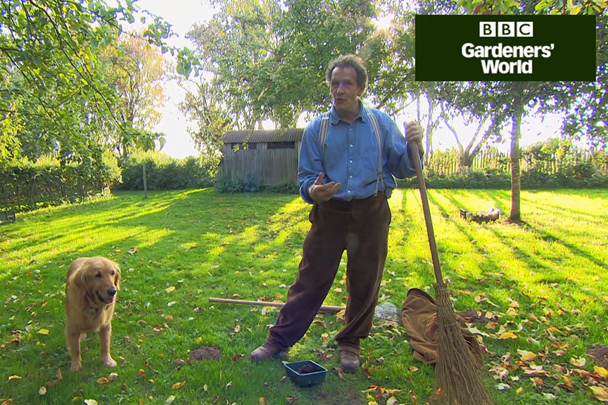 How to look after your lawn in autumn video