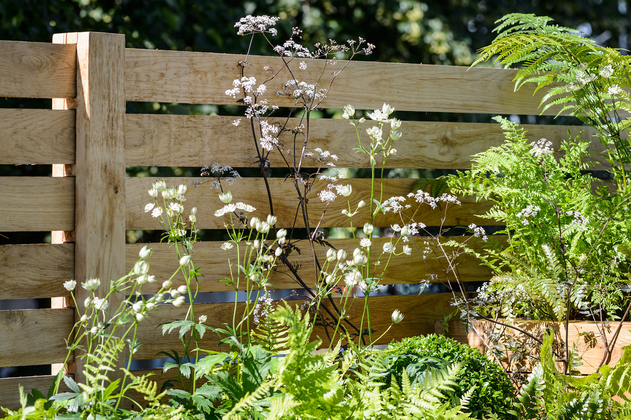 Ideas for Garden Walls and Fences
