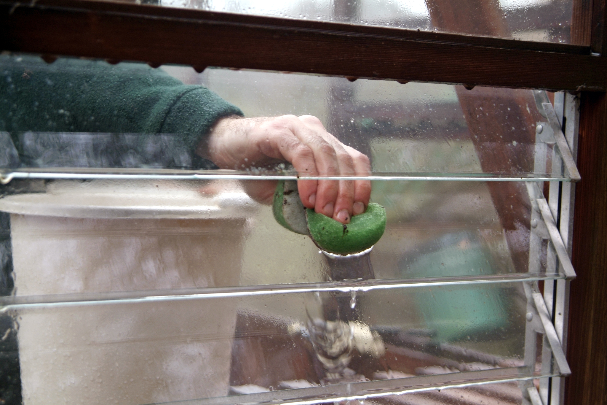 cleaning-the-greenhouse-5
