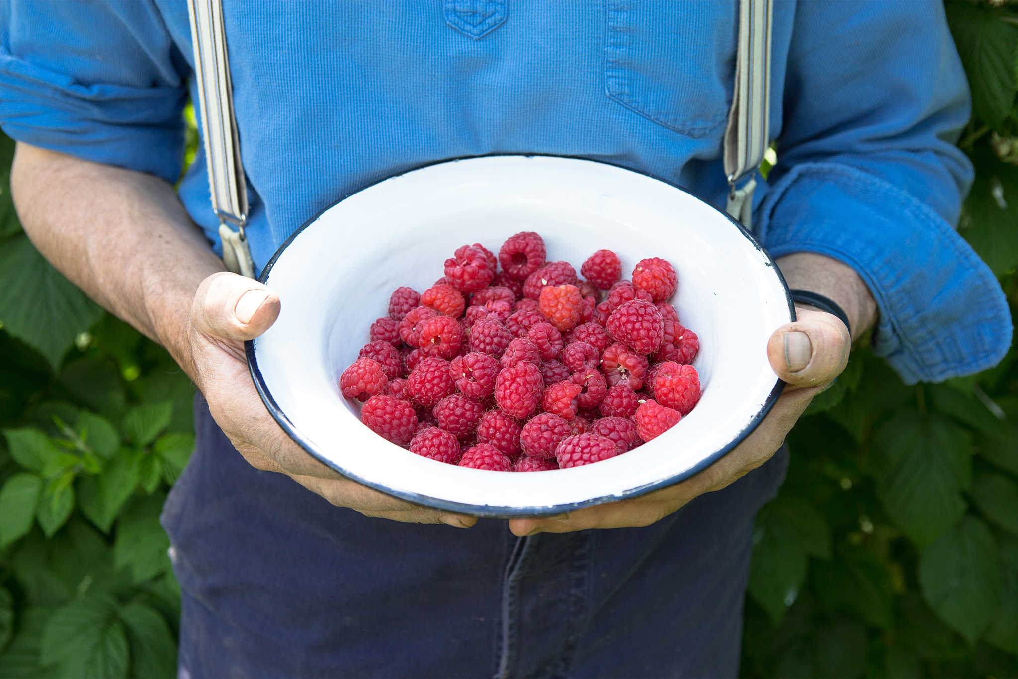 Monty Don with bowl of raspberries