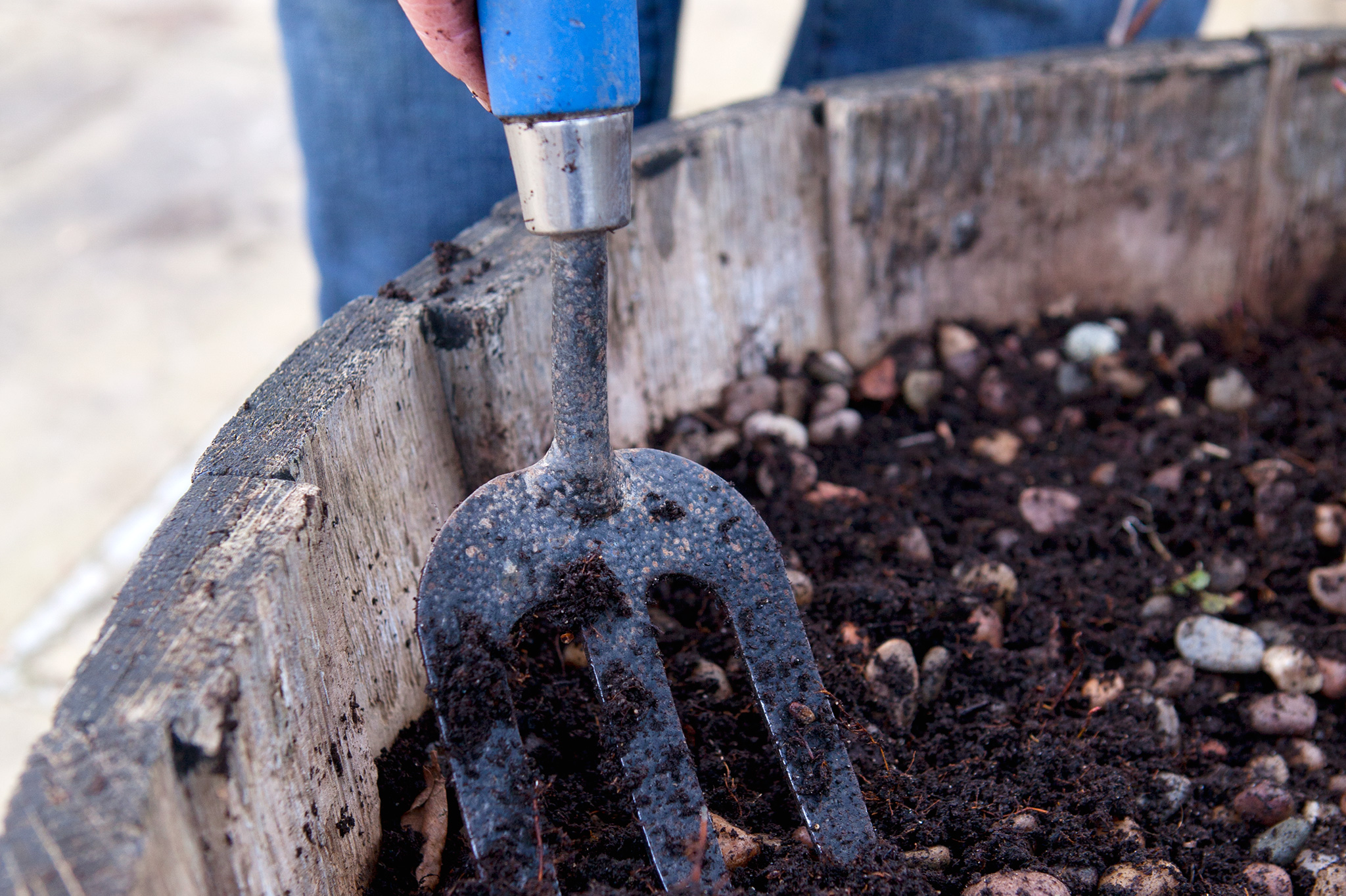 loosening-the-old-compost-2