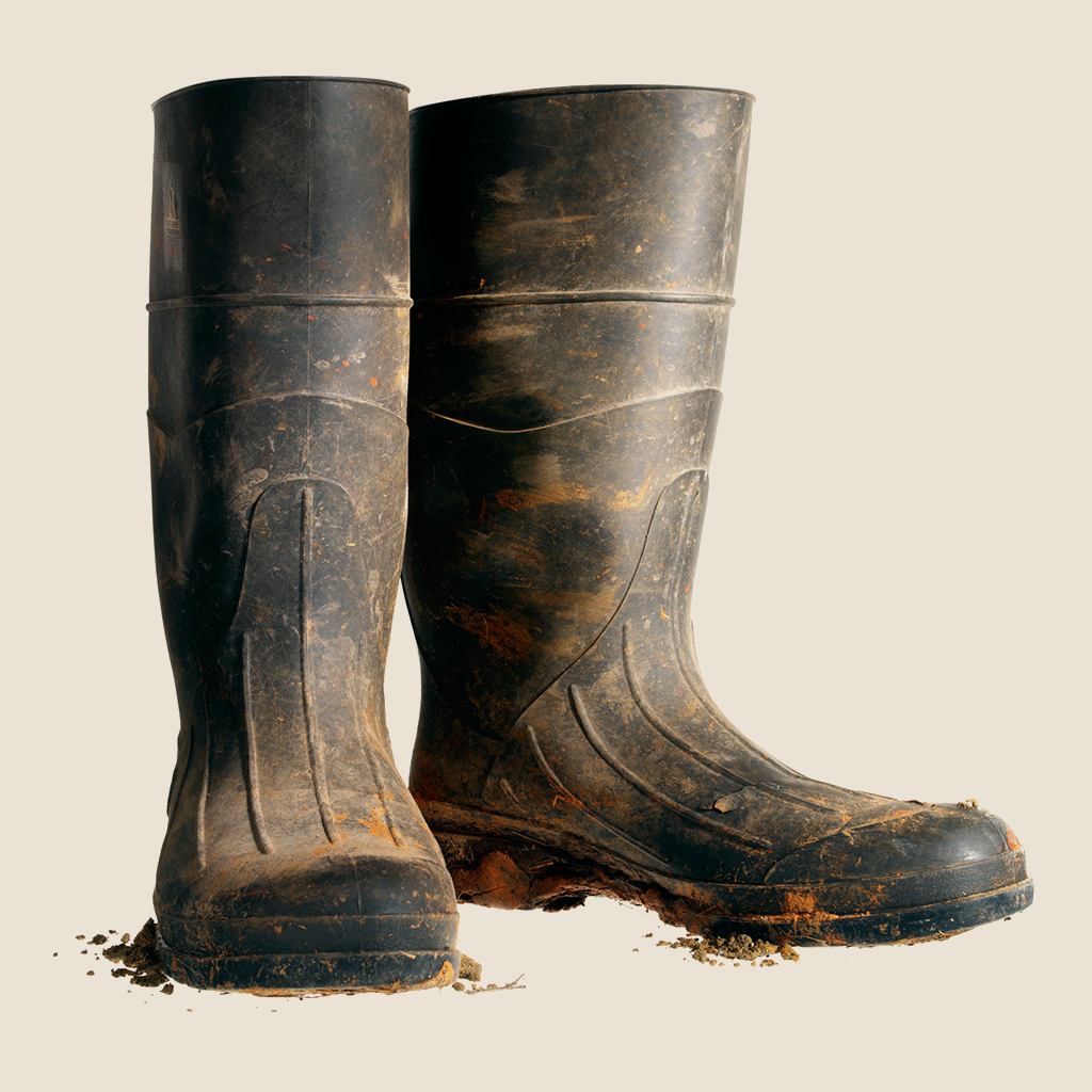Muddy wellies