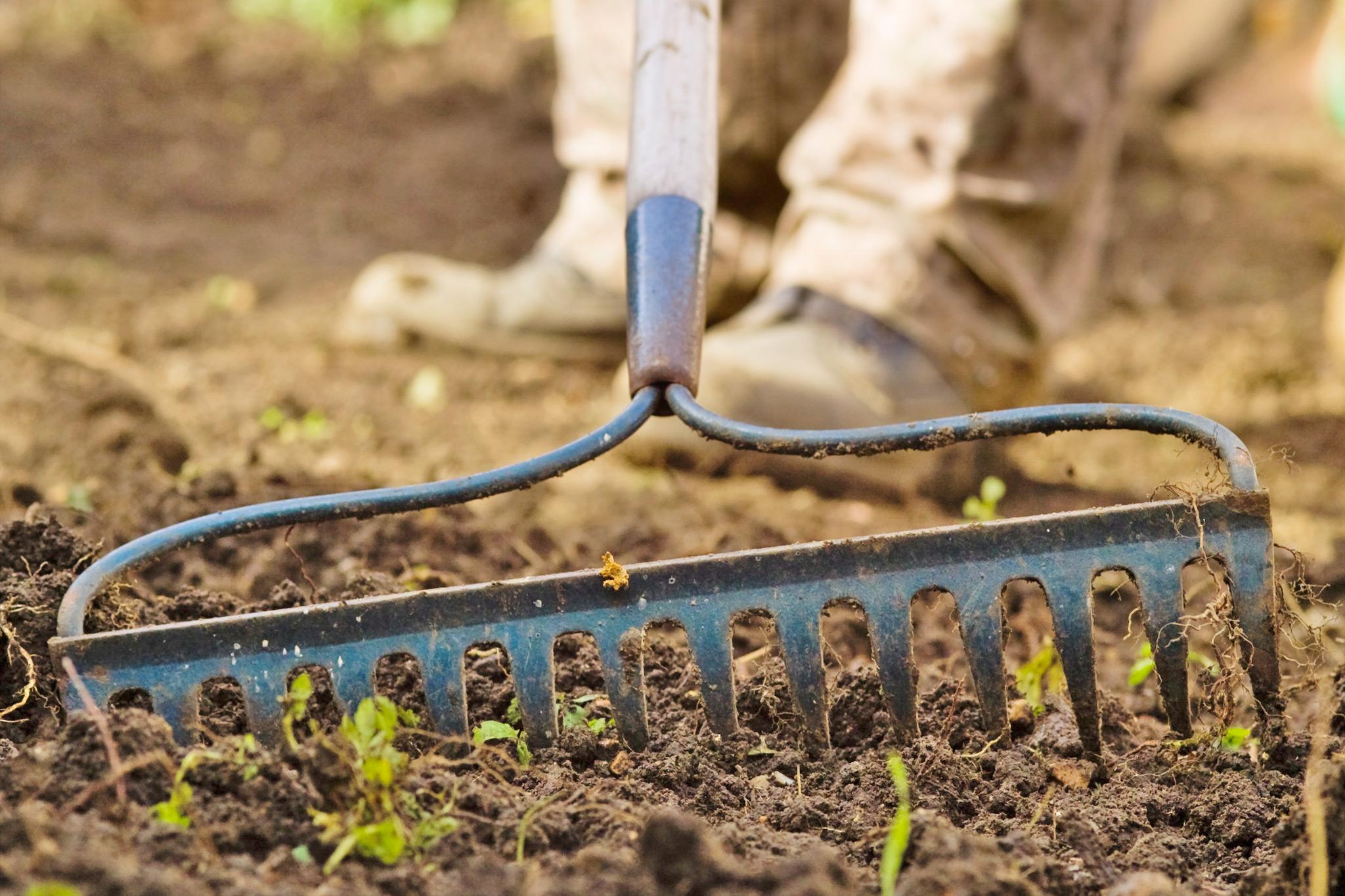 raking-topsoil-to-level-the-lawn-area-3
