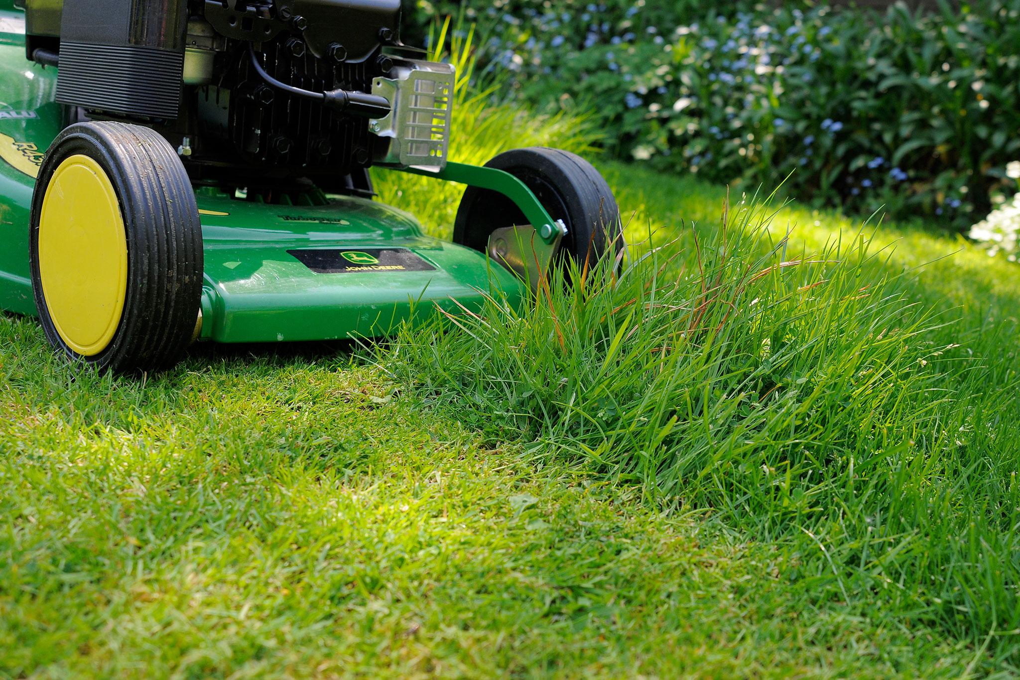 keep-an-area-of-grass-short-2