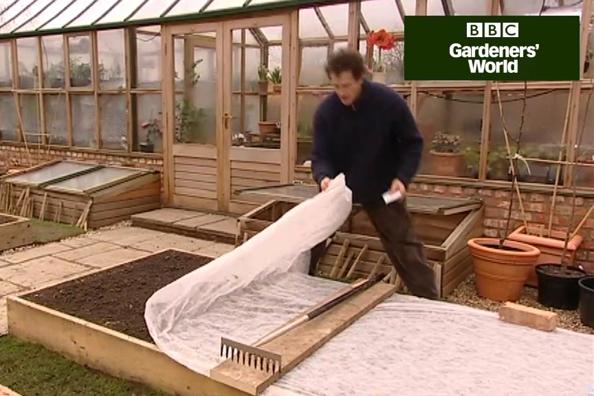 How to grow spinach from seed video