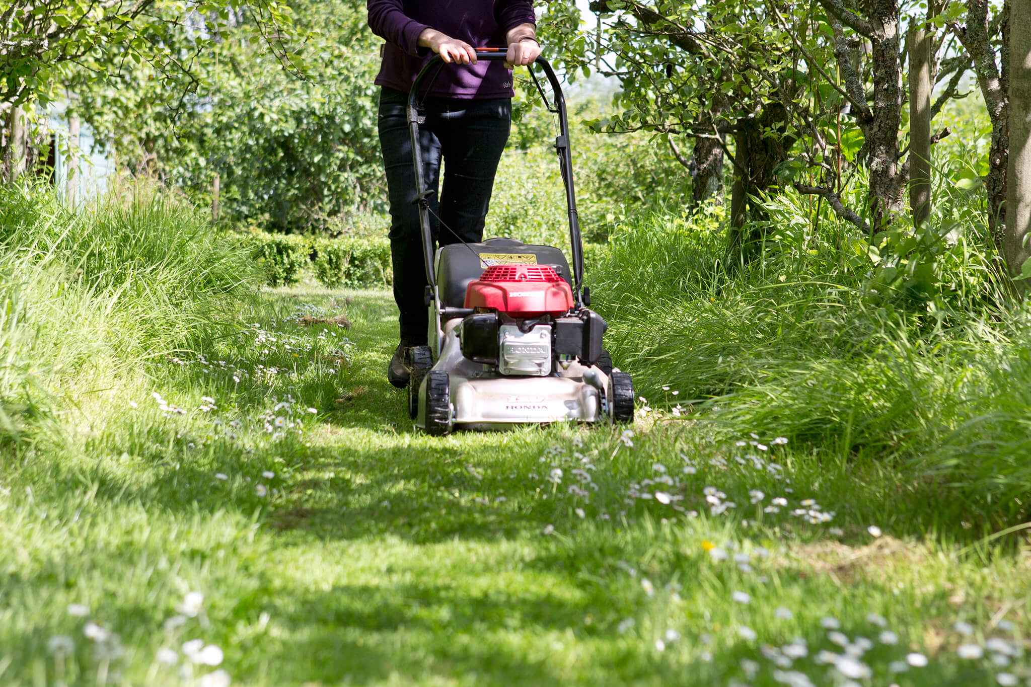 mowing-the-lawn-4