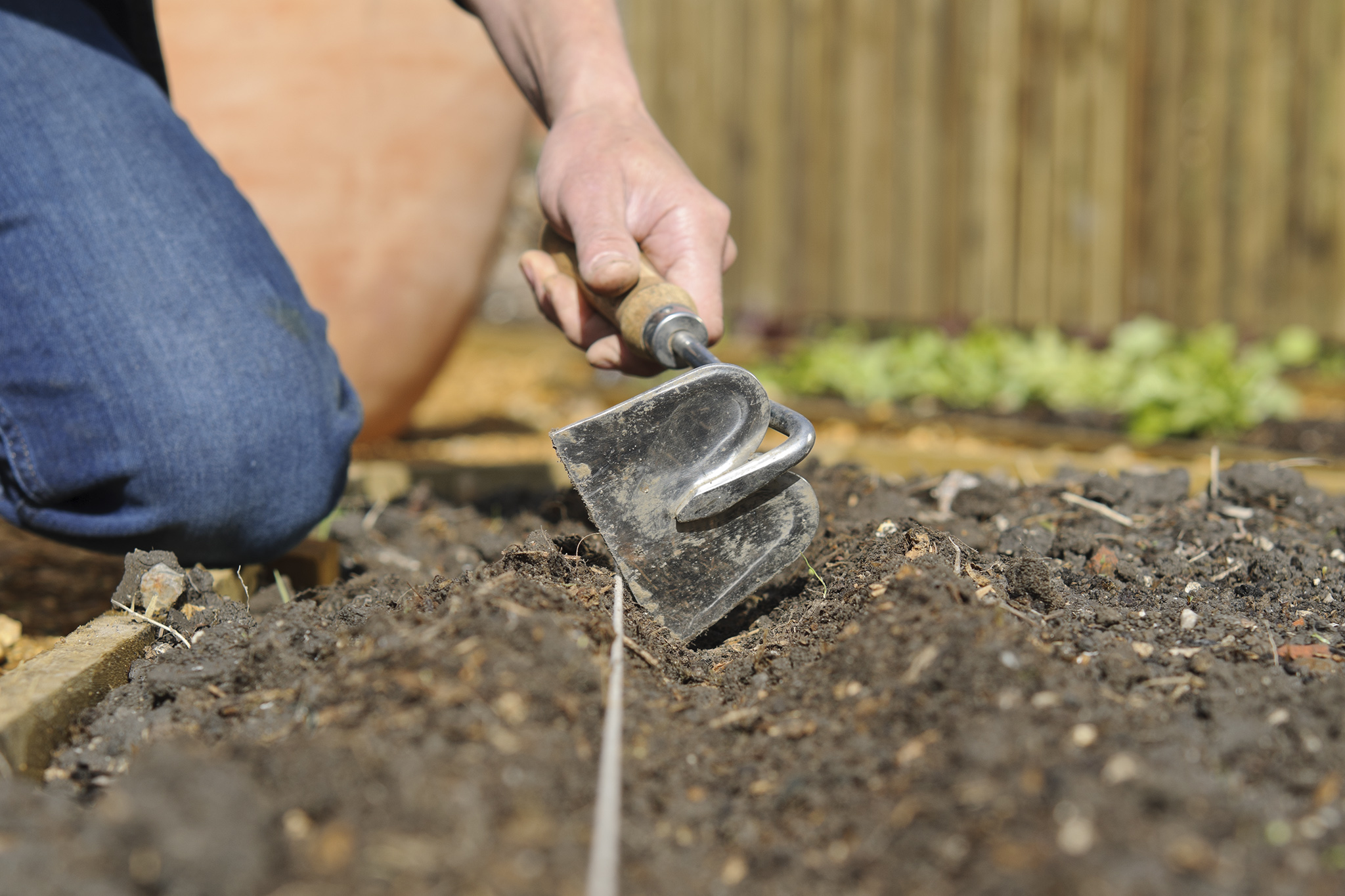 rake-the-soil-and-make-a-drill-2