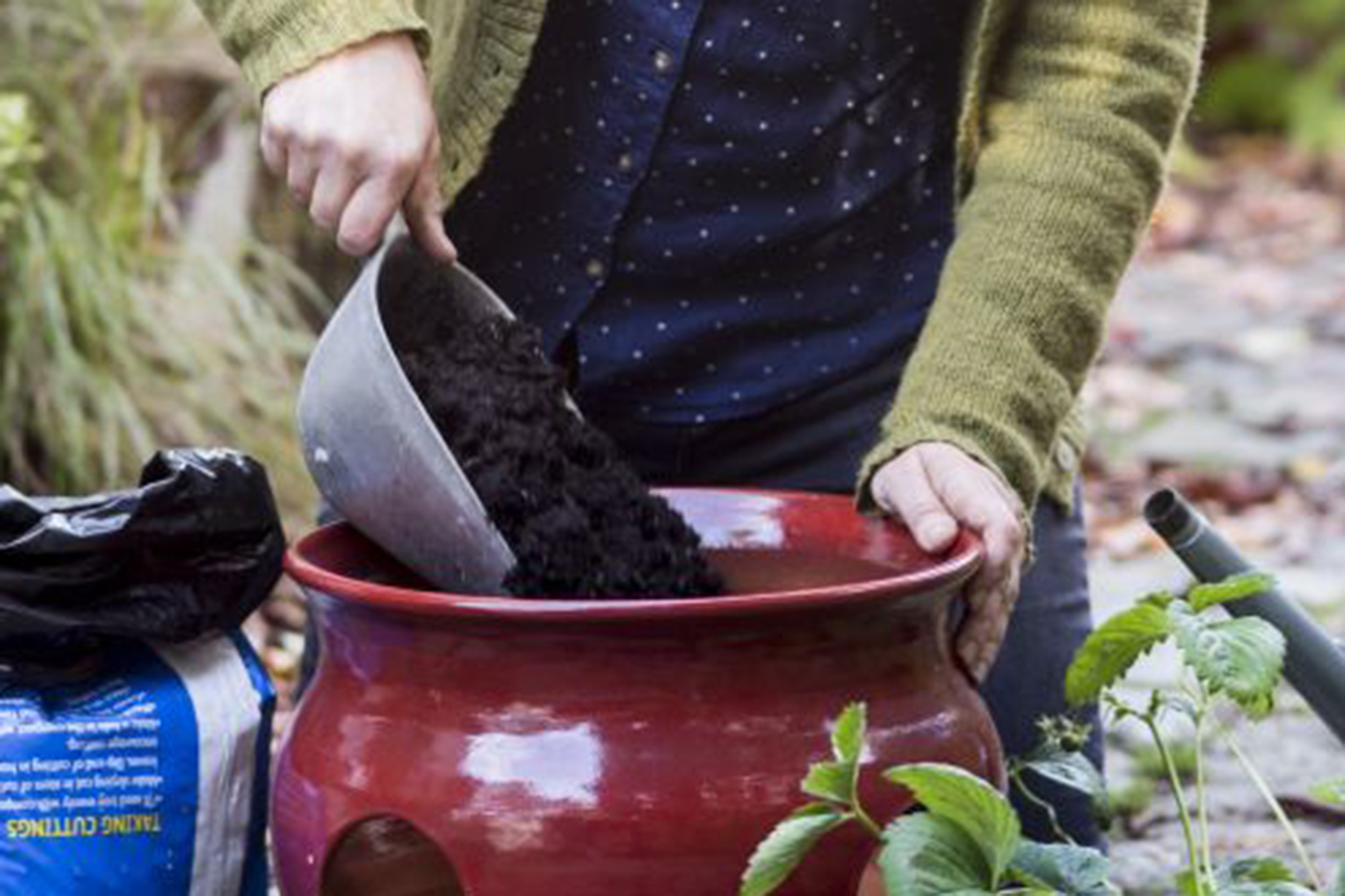 planting-up-the-pot-8