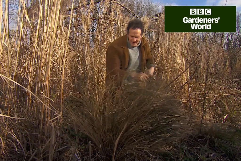 How to mulch borders in spring video