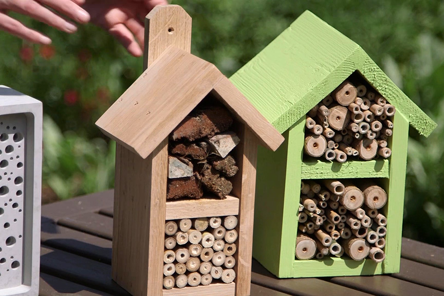 Bee hotel varieties video