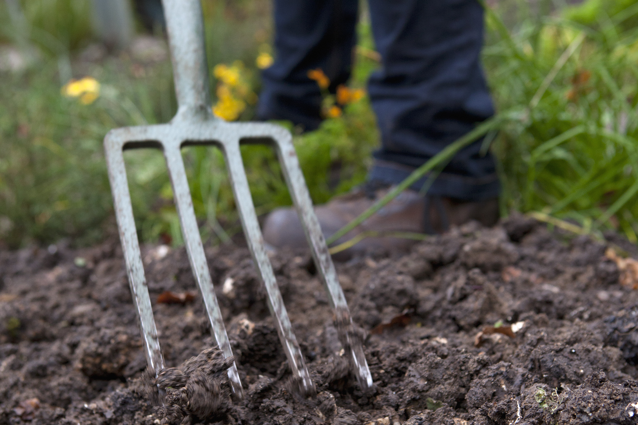 prepare-your-soil-by-forking-and-improving-3