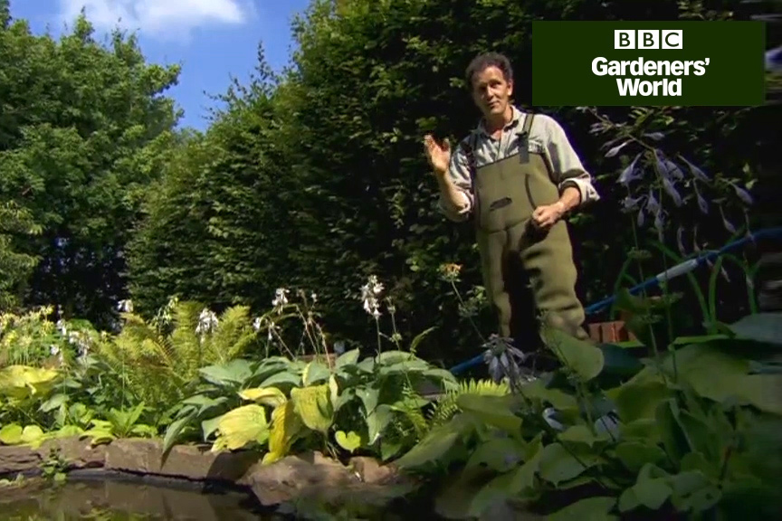 How to clear your pond water video