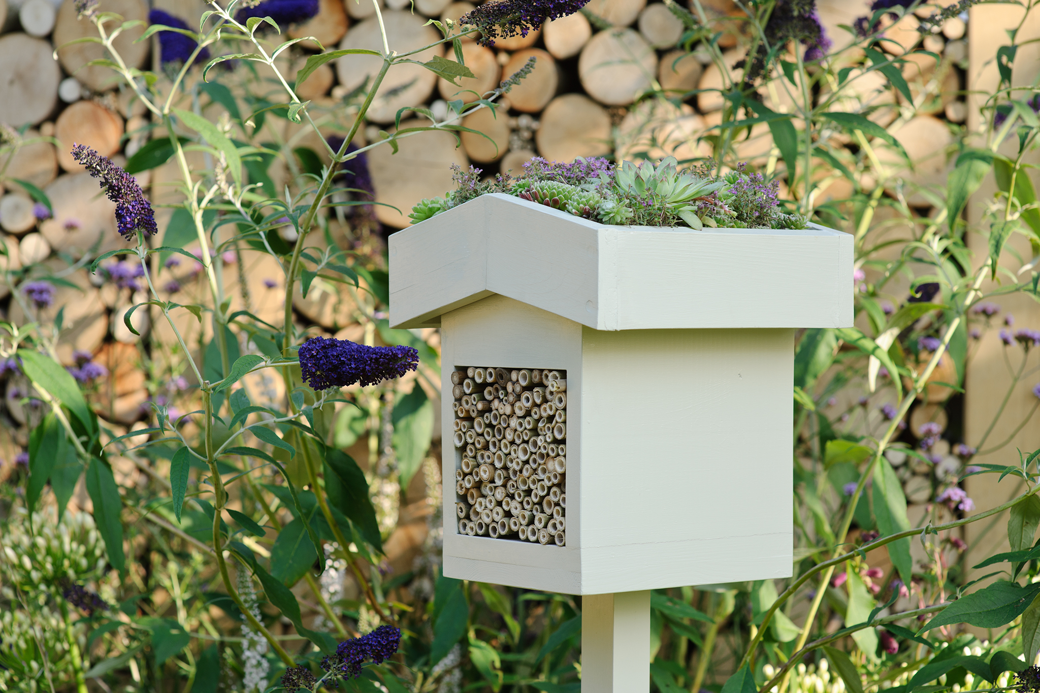 bee-hotel-with-green-roof