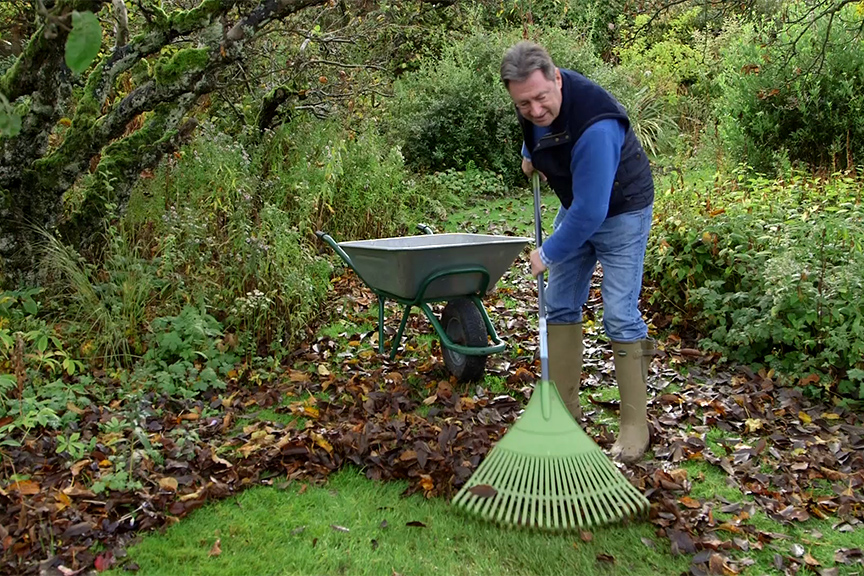 Raking leaves from borders and grass NFG video