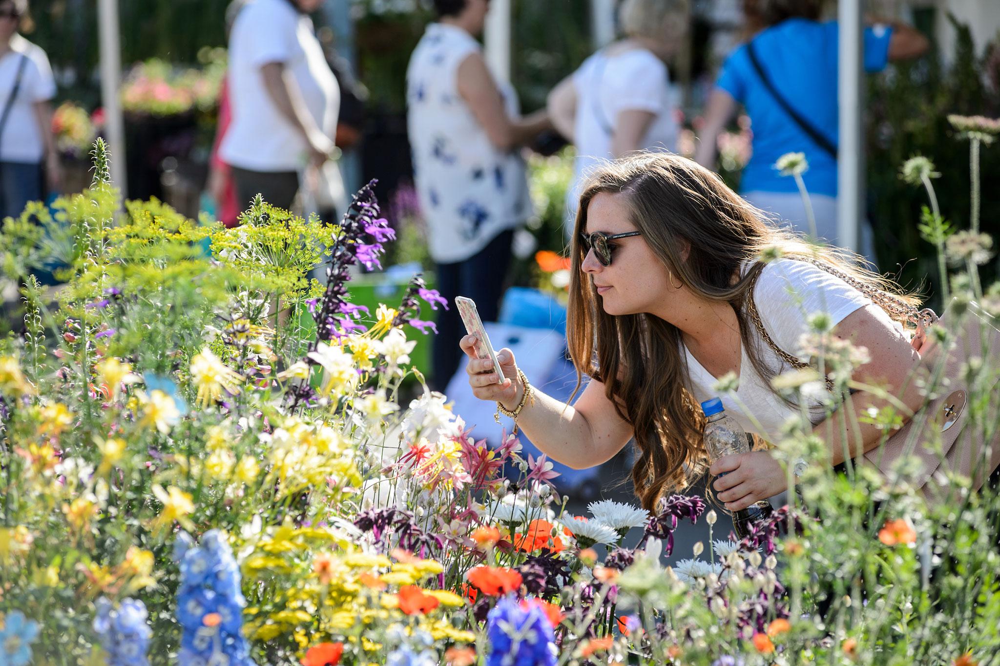 visitor-at-bbc-gardeners-world-live-2