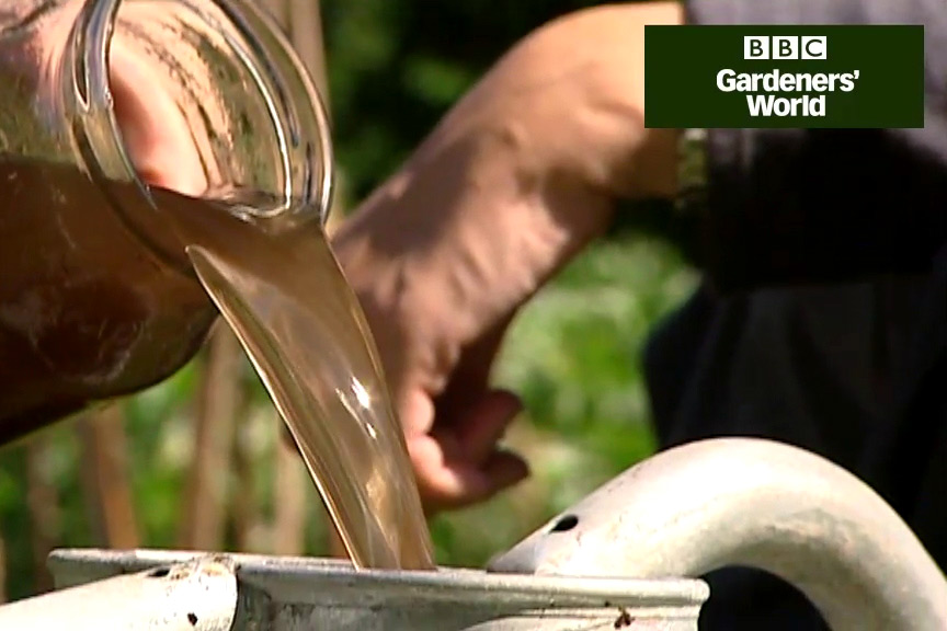 How to make a nettle feed video