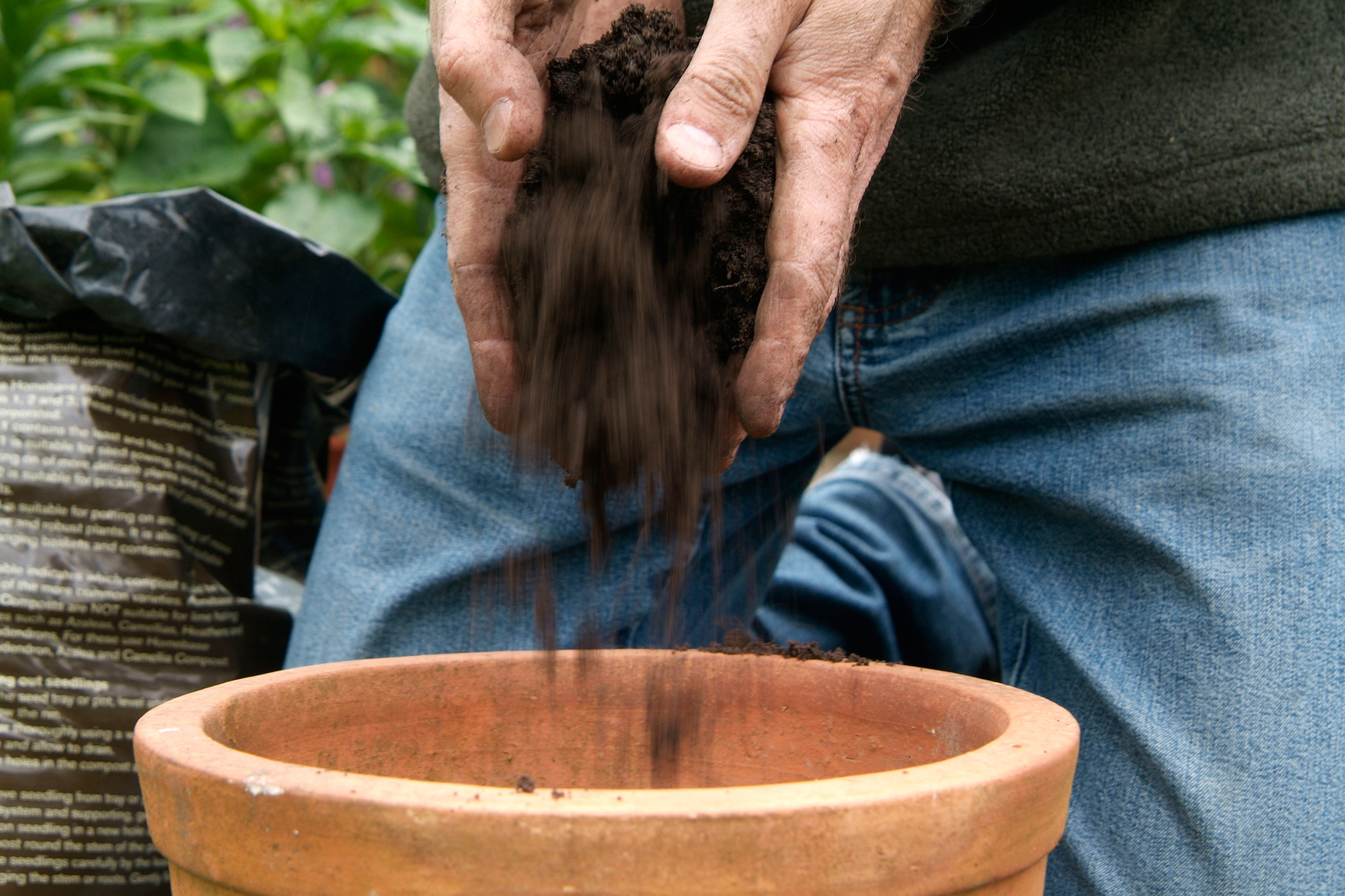 filling-a-pot-with-compost-3