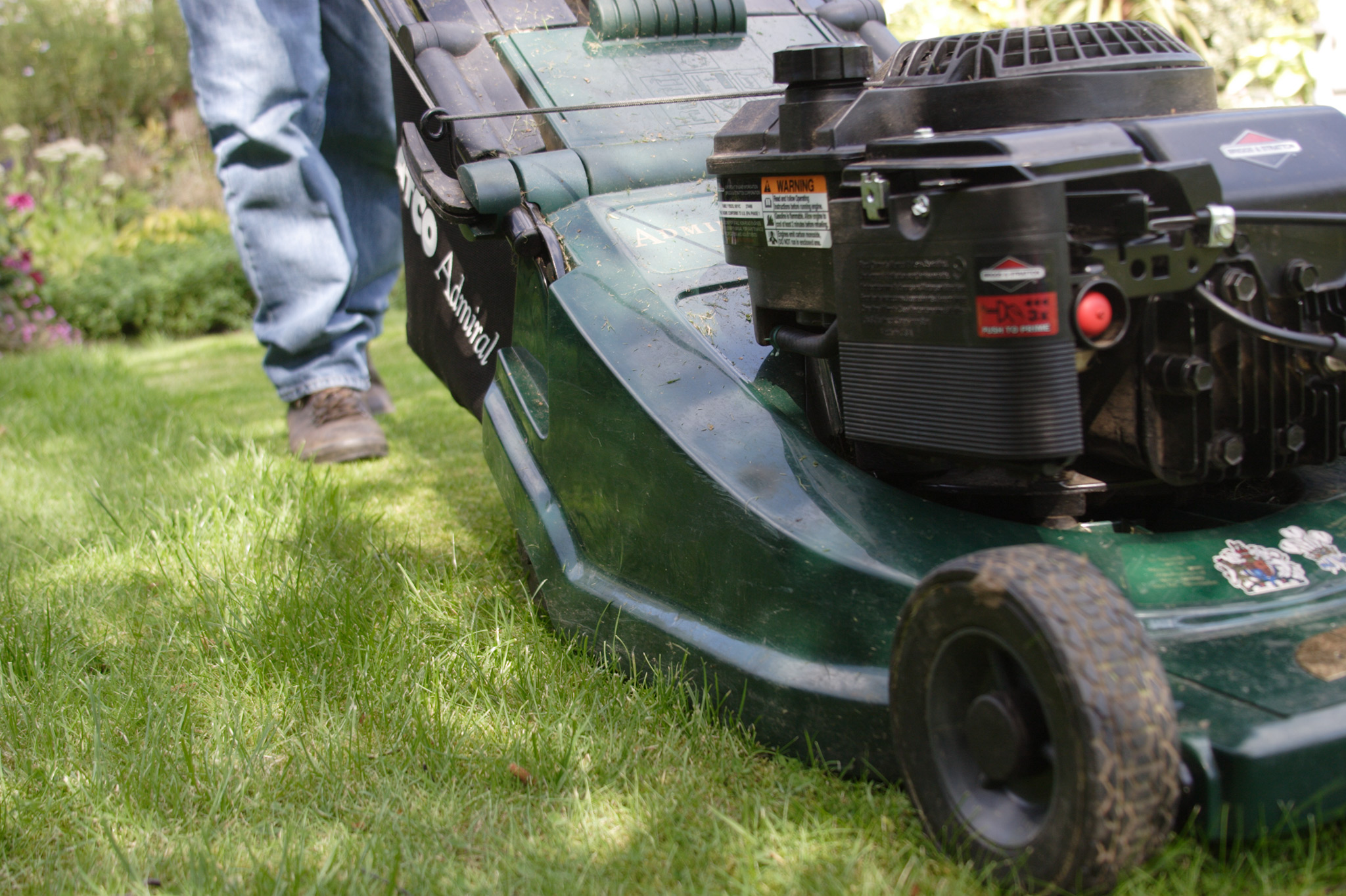 mowing-the-new-lawn-3