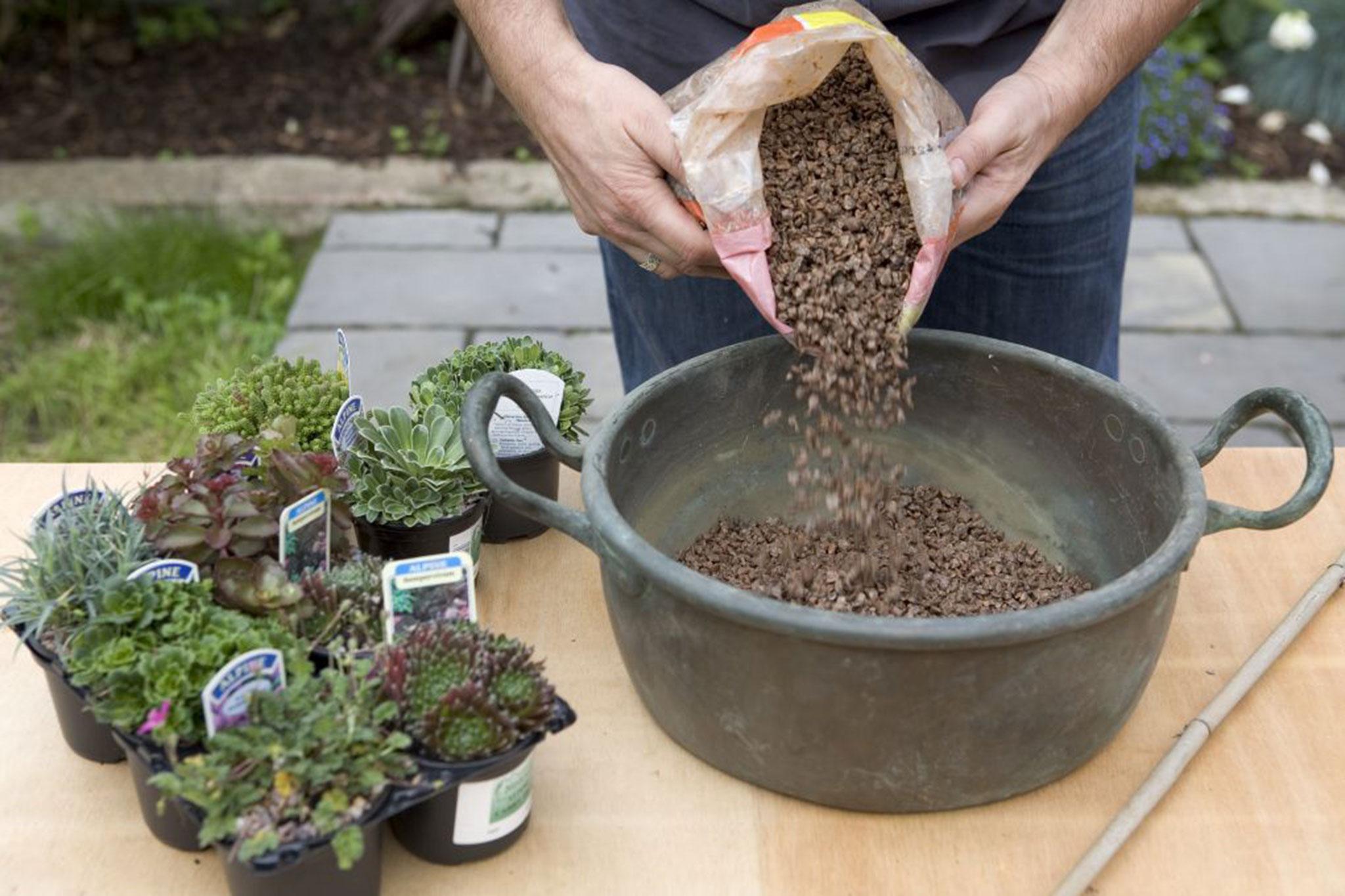 adding-horticultural-grit-2