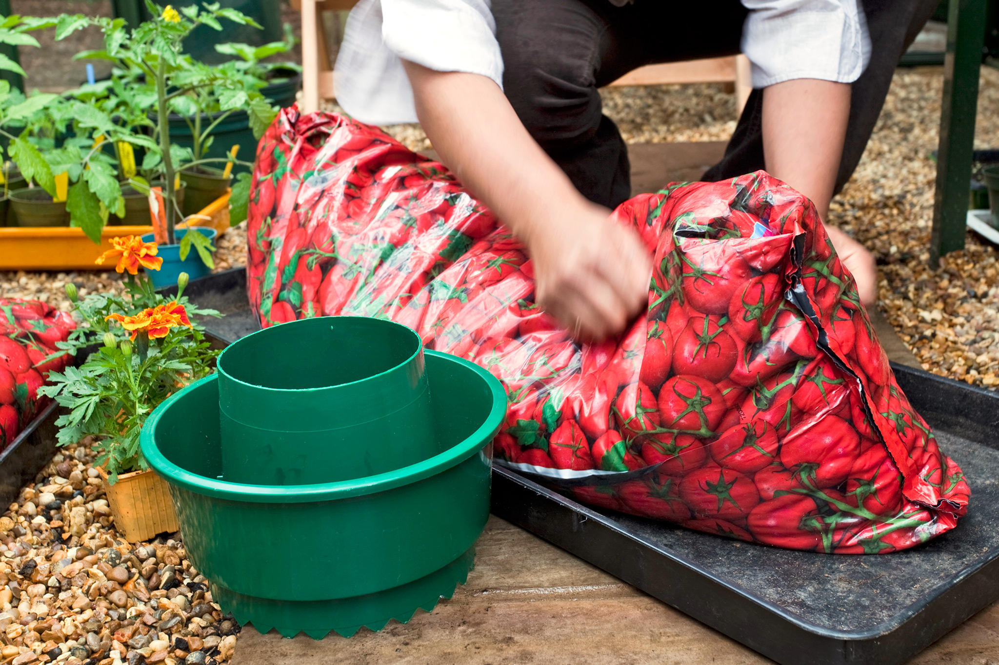 shaking-the-growing-bag-to-dislodge-the-compost-2