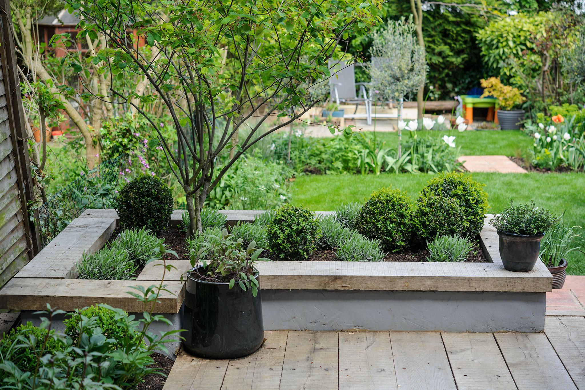 12 Tips for a Dog-Friendly Garden - gardenersworld.com