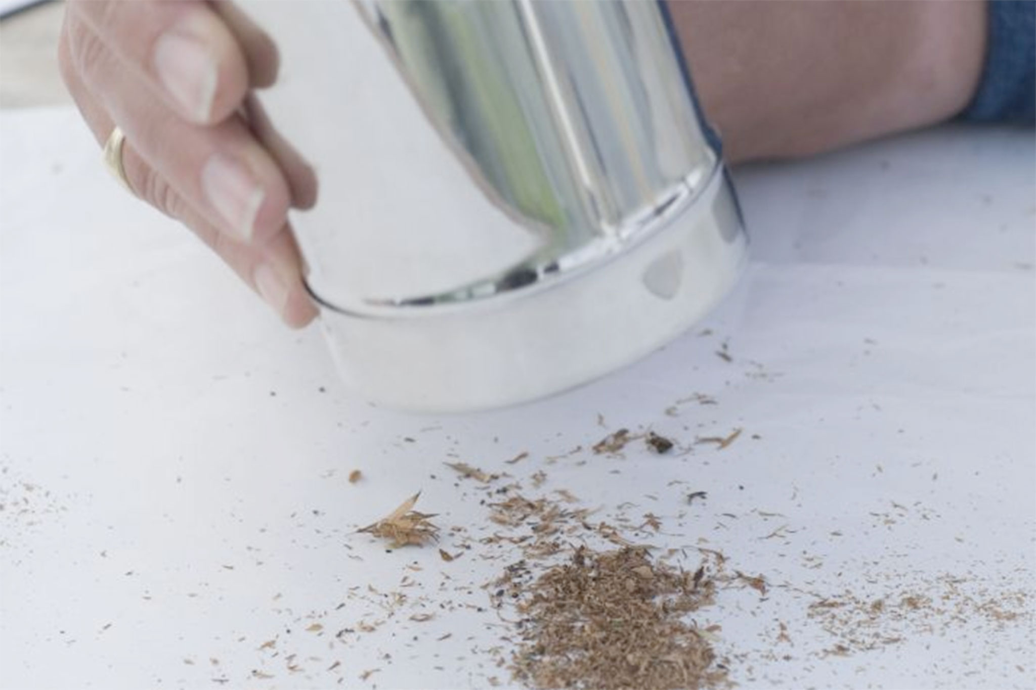 sieving-the-seed-through-a-finer-sieve-2