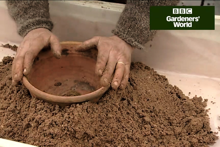 How to plant an alpine sand box