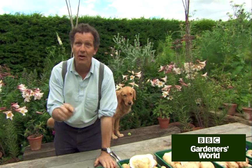 Monty Don's potato trial part two video
