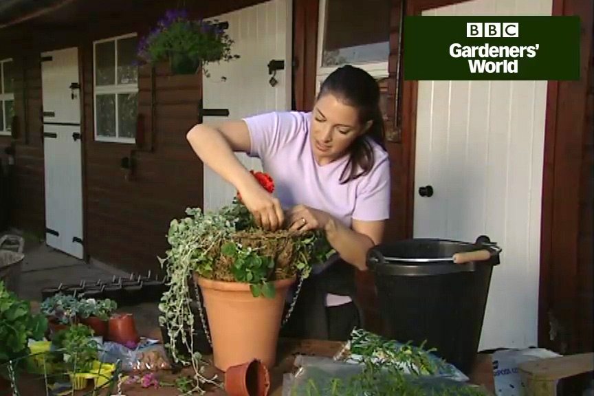 How to plant a traditional hanging basket video