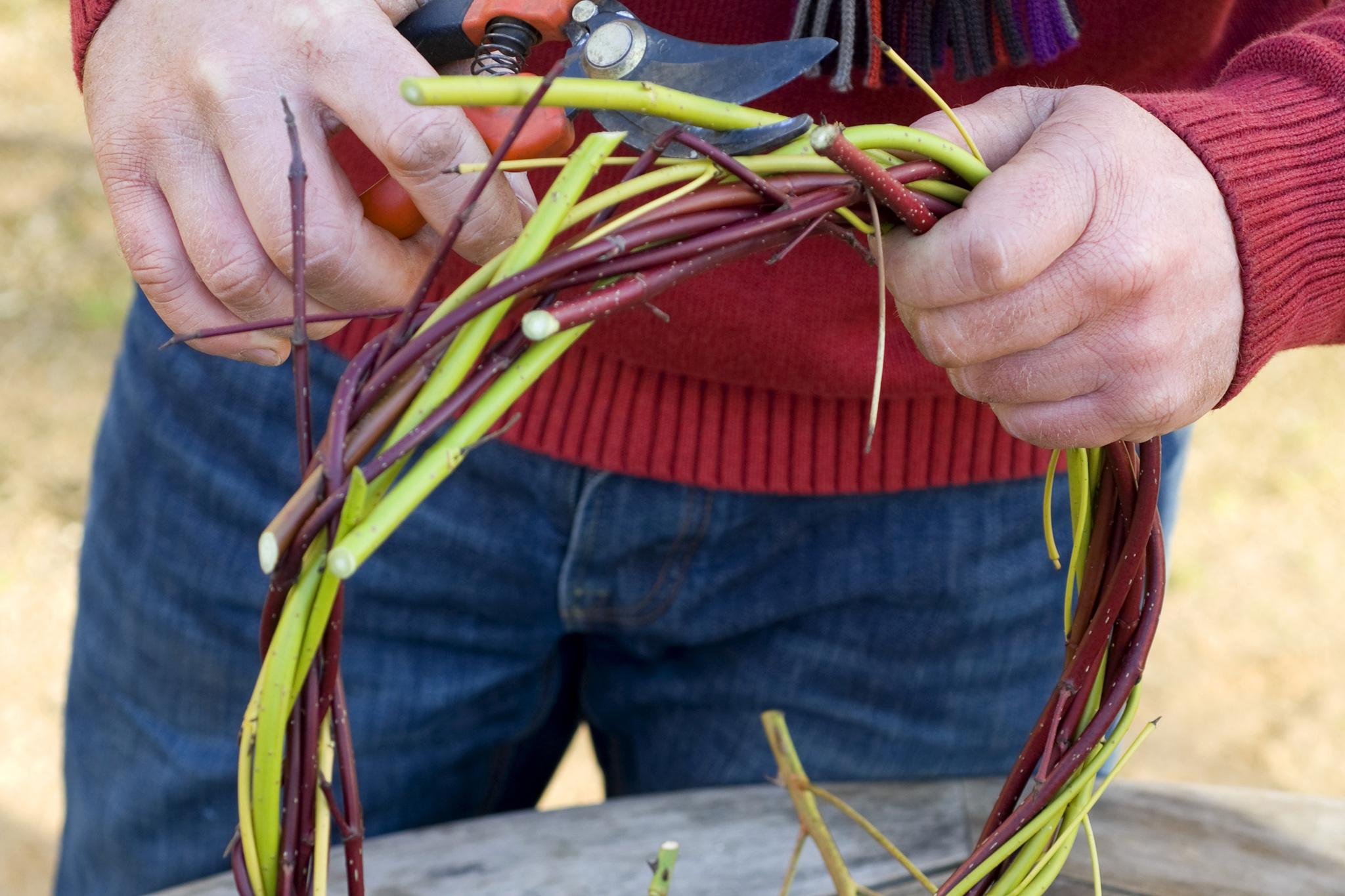 weaving-dogwood-stems-together-3