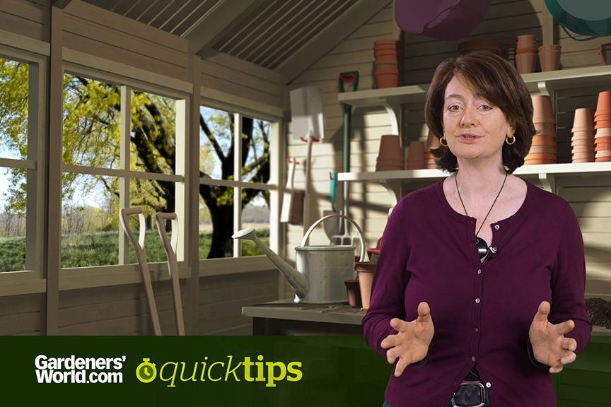 Quick Tips Can I make compost in a plastic dustbin