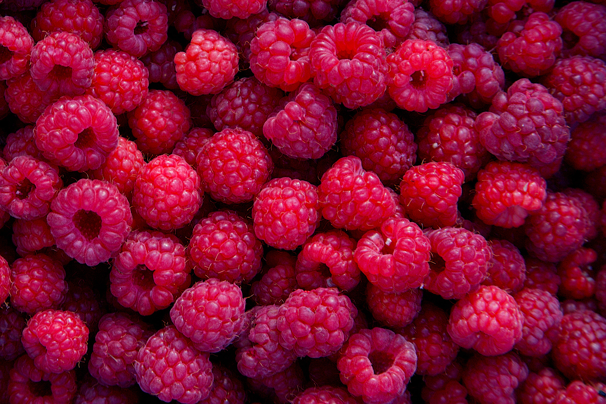 raspberries-high-in-vitamin-c-2