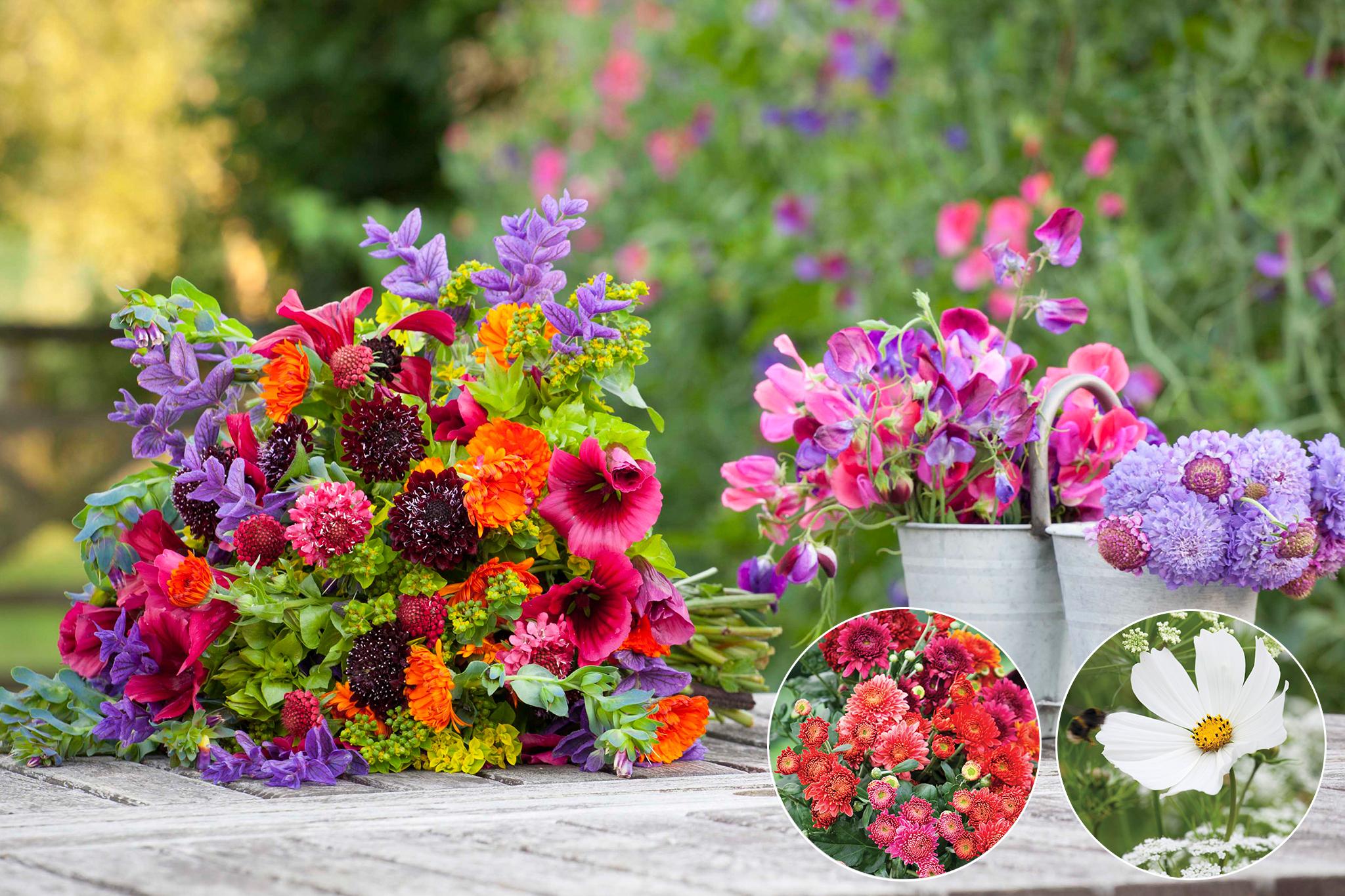 sarahraven-cut-flowers-15-per-cent-off
