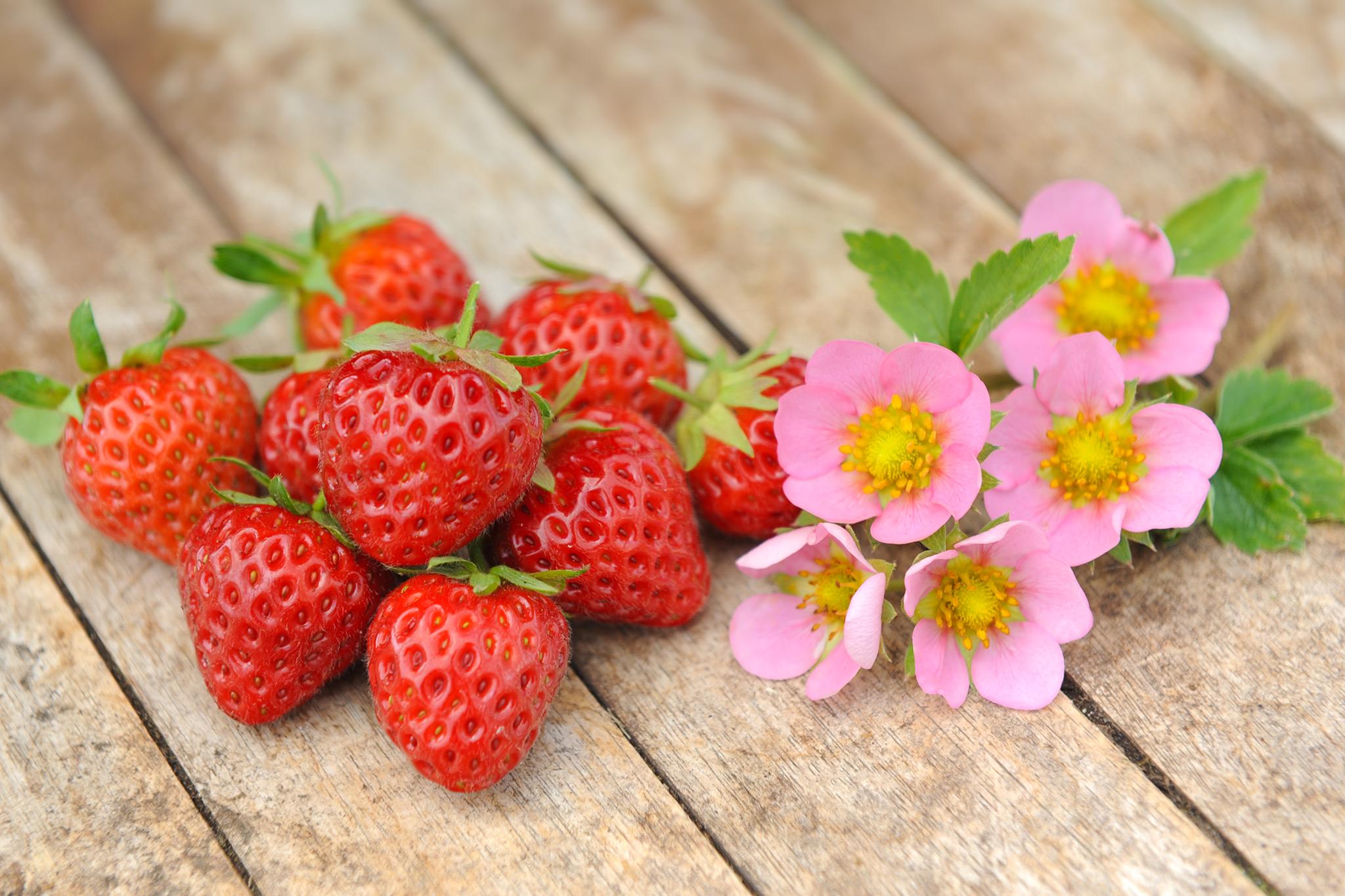 tandm-strawberries
