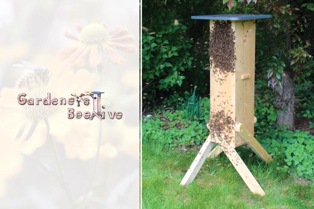 2018-jun-gardeners-beehive-1024-683-thumb