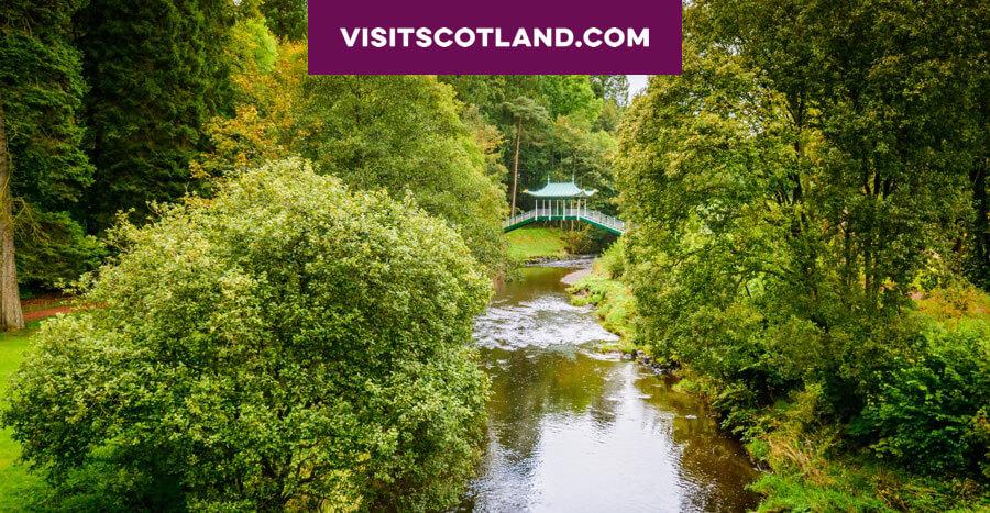 A bridge over a woodland stream
