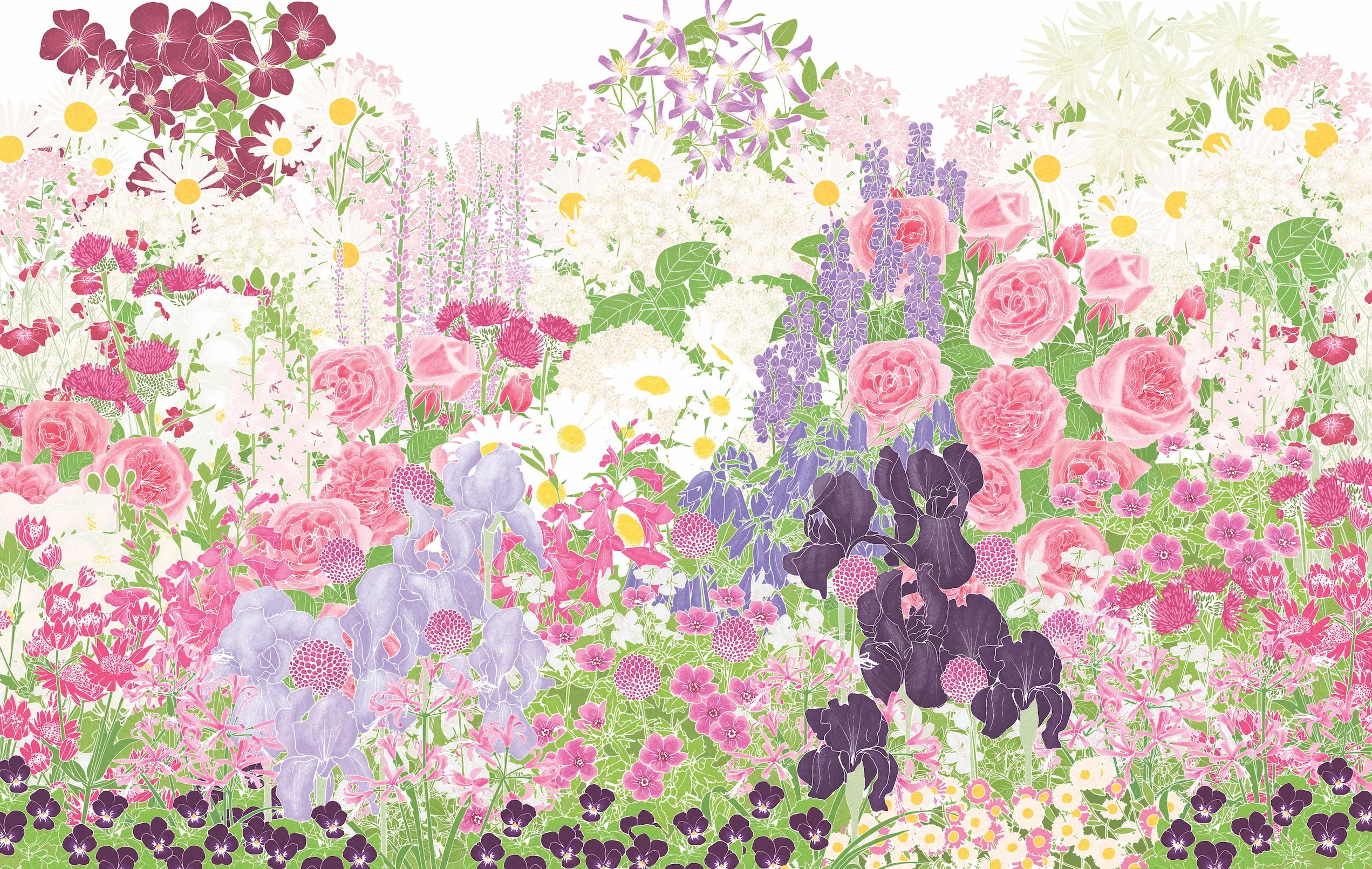 Download Our Designer Border Plan Romantic Flower Border Gardens