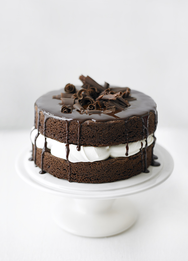 Easy Sponge Cake Recipe for a Basic Chocolate Sponge Cake